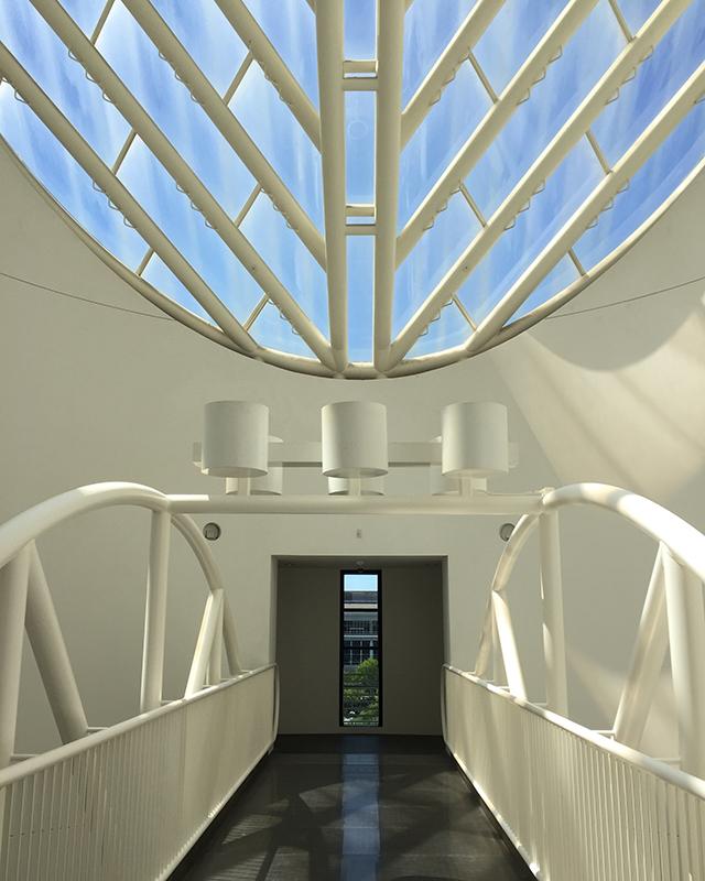 Oculus Bridge
